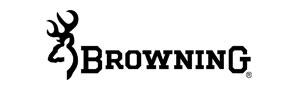 Logo Browing